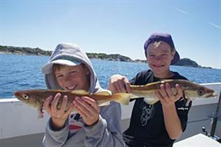 Fisketips